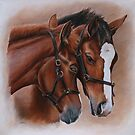 Foal embrace by Stephanie Greaves
