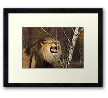 I'm the King! Framed Print
