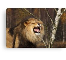I'm the King! Canvas Print