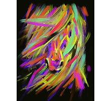 Horse Rainbow Hair Photographic Print