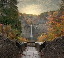 Taughannock Lights by Jessica Jenney