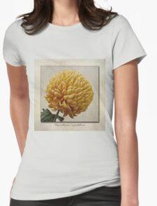 Chrysanthemum grandiflorum Yellow T-Shirt