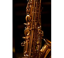The Alto Saxophone Photographic Print
