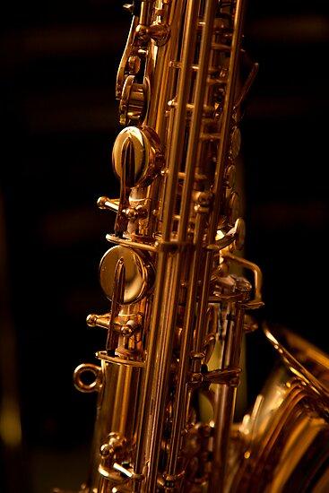 The Alto Saxophone by StantonP