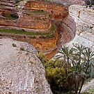 Wadi in Tunisia  by globeboater