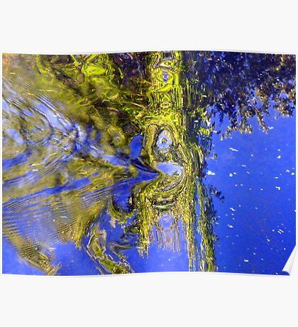 Water Spirits... Poster