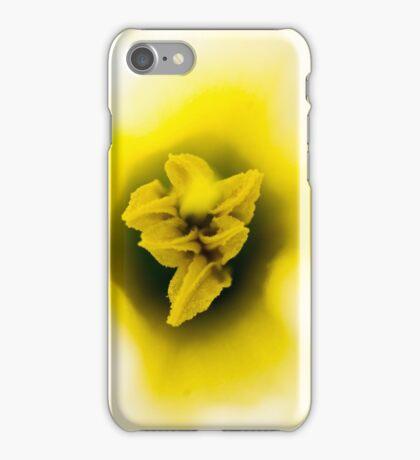 Daffodil I iPhone Case/Skin