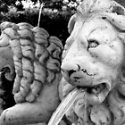 Lion Fountains of youth - Mount Dora, Florida by Rick Short