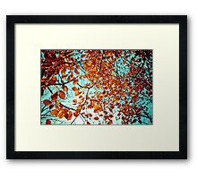 Rustic Autumn Framed Print