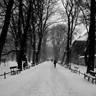 A Layer of Snow by dher5