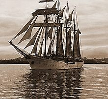 'Esmeralda' leaves Auckland under sail........! by Roy  Massicks