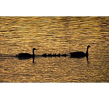 Silhouette on the River Photographic Print