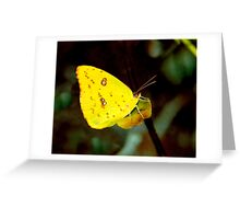 Sulphur. Greeting Card