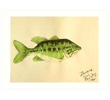 Large Mouth Bass Art Print