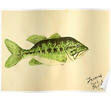 Large Mouth Bass Poster