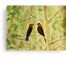 Brown Headed Cowbirds Canvas Print