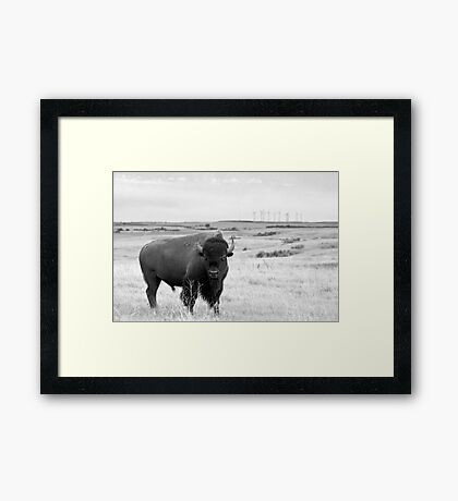 Power of the Prairie Framed Print