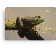Frog 8376 Canvas Print
