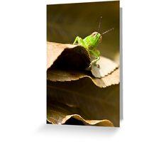 Got Leaf? Greeting Card
