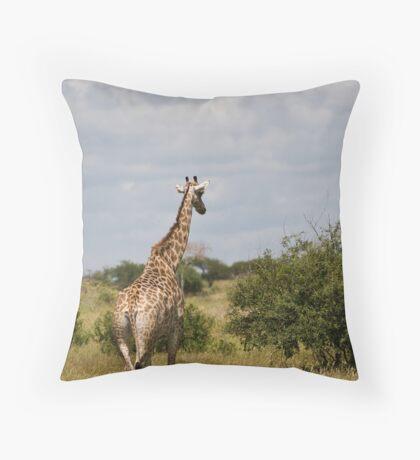 Contemplative Throw Pillow