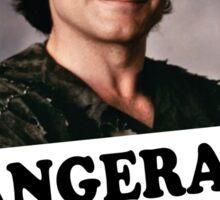bangerang Sticker
