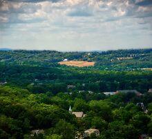 Atop Goat Hill by Debra Fedchin