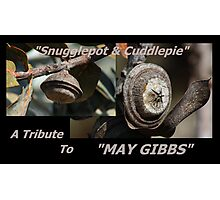 A tribute to May Gibbs Photographic Print