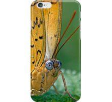 Julia Butterfly iPhone Case/Skin