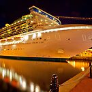 Sapphire Princess Take Me Away!! by Wendi Donaldson Laird