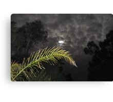 Eerie Night  Canvas Print