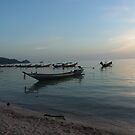 Sleeping Beach  by Nith