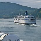 Ferry , Vancouver to Victoria, Canada, 2012. by johnrf