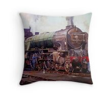 """""""Kenilworth"""" on shed. Throw Pillow"""