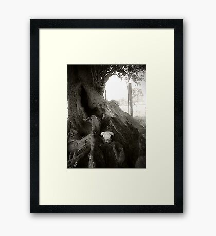 Back to the Earth Framed Print