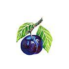 plum by running060