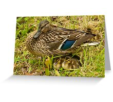 Mother & Babies Greeting Card