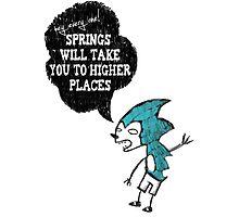 Spring Wisdom Hedgehog Photographic Print