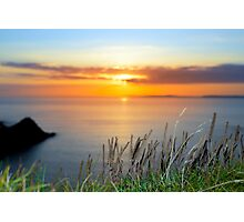 sunset over loop head with the wild tall grass Photographic Print