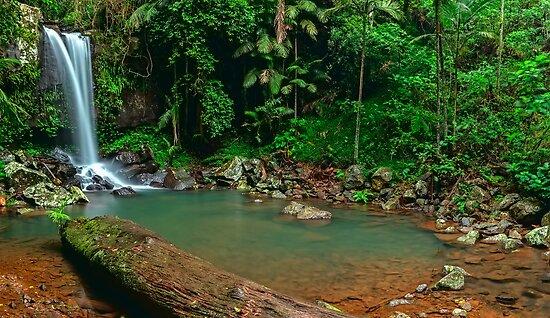 Curtis Falls - Mt Tamborine by Mark  Lucey
