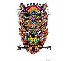 Spirit of Sacred Knowledge by AmandaVela