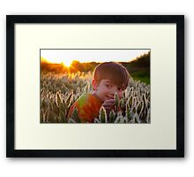 Bugs At Sunset Framed Print