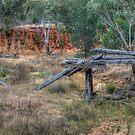 Plain old bridge by vilaro Images