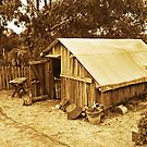 Life At The Diggings - Miner's Cottage by TonyCrehan