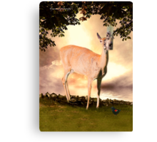 Summer's Dawn (White Tail Deer and Red Wing Black Bird) Canvas Print