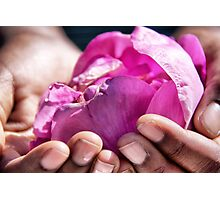 The rose of friendship Photographic Print