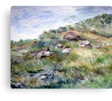 Along the coastline Canvas Print