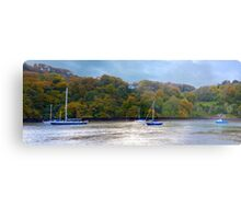 The River Dart Metal Print