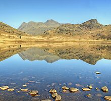 Back To Blea Tarn.. by Jamie  Green