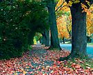 Leaf-Kickin' Stroll by Gene Walls