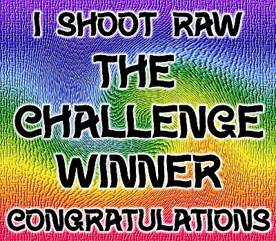 I shoot raw .. challenge winner by LoneAngel